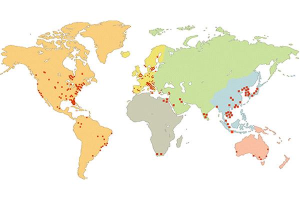 map marchetti dilatomer
